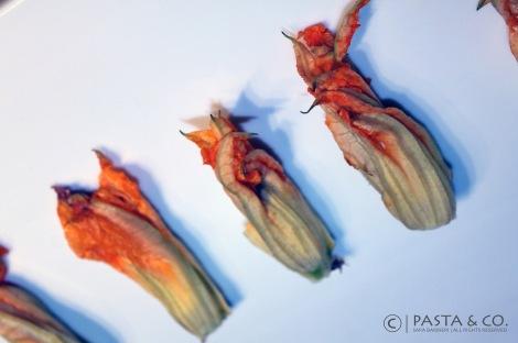 ZucchiniFlower4